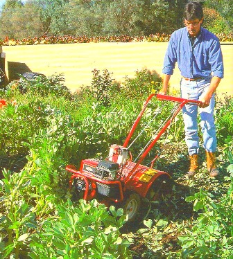 Organic weed control that protects the environment and Vegetable garden weed control